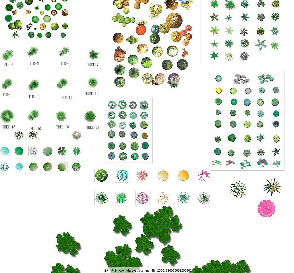园林平面植物素材图片