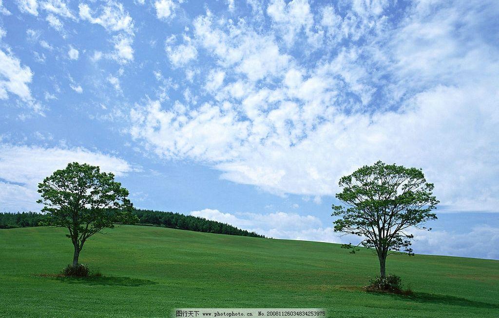陆地旷野 陆地 旷野 丘陵 野外 草原 草地 树木 天空 蓝天白云 自然