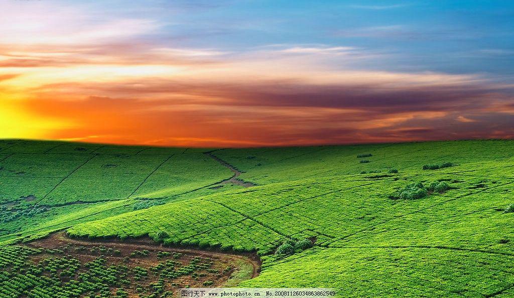 自然风景 天空 田野 农田 自然景观 摄影图库 300dpi jpg