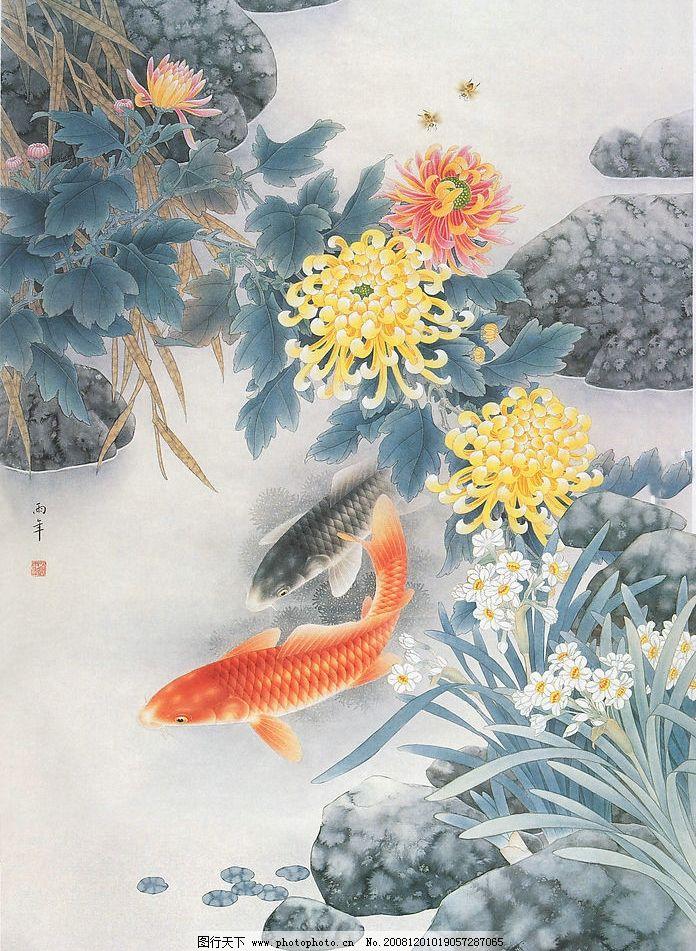 国画鱼 石头 水 菊花