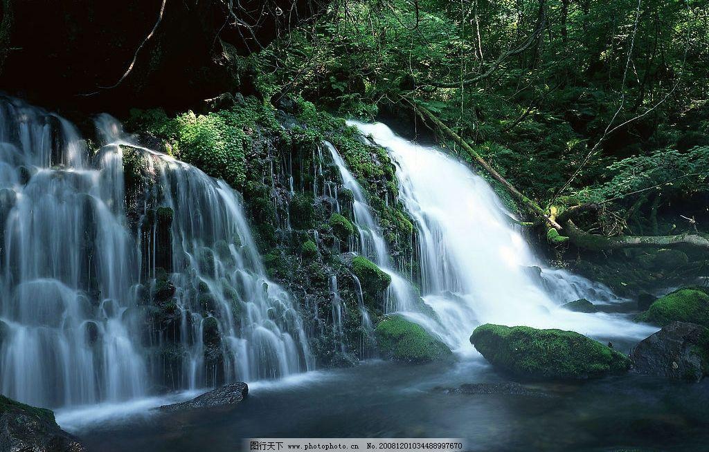 风景 清溪 自然 小溪 河流 水 瀑布 树木 小树 青苔 绿叶
