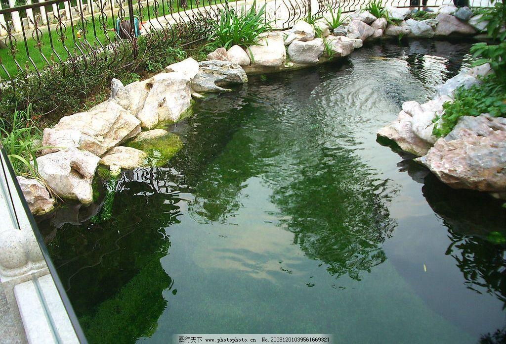 鱼池 地产素材 房地产 花园 园艺 环境 建筑园林 园林建筑 摄影图库