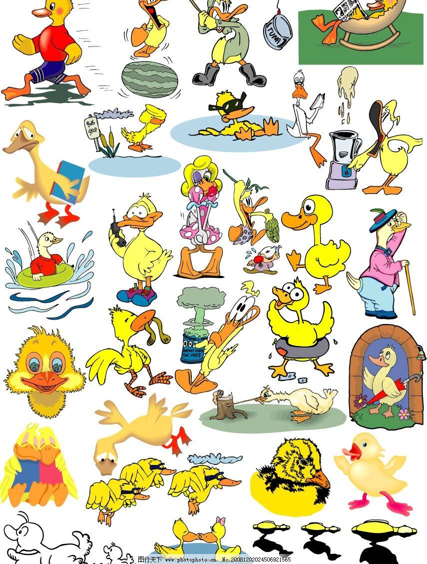 家禽 动物 卡通 生物世界