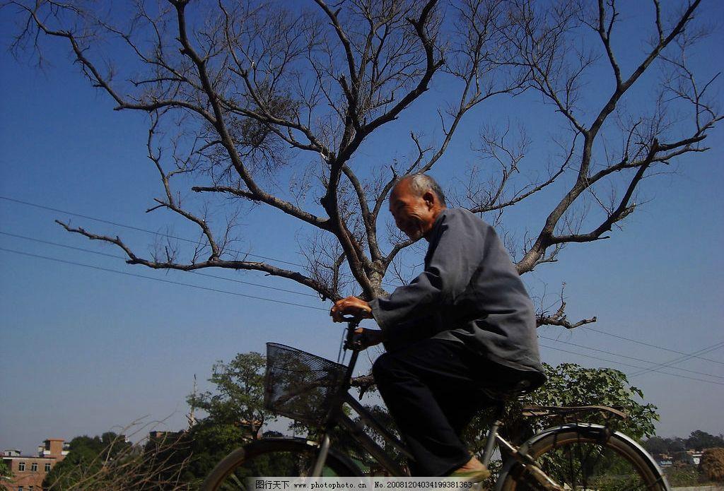 乡村风景 老人 树 枯木 自行车 解放鞋 初冬 旅游摄影 摄影图库