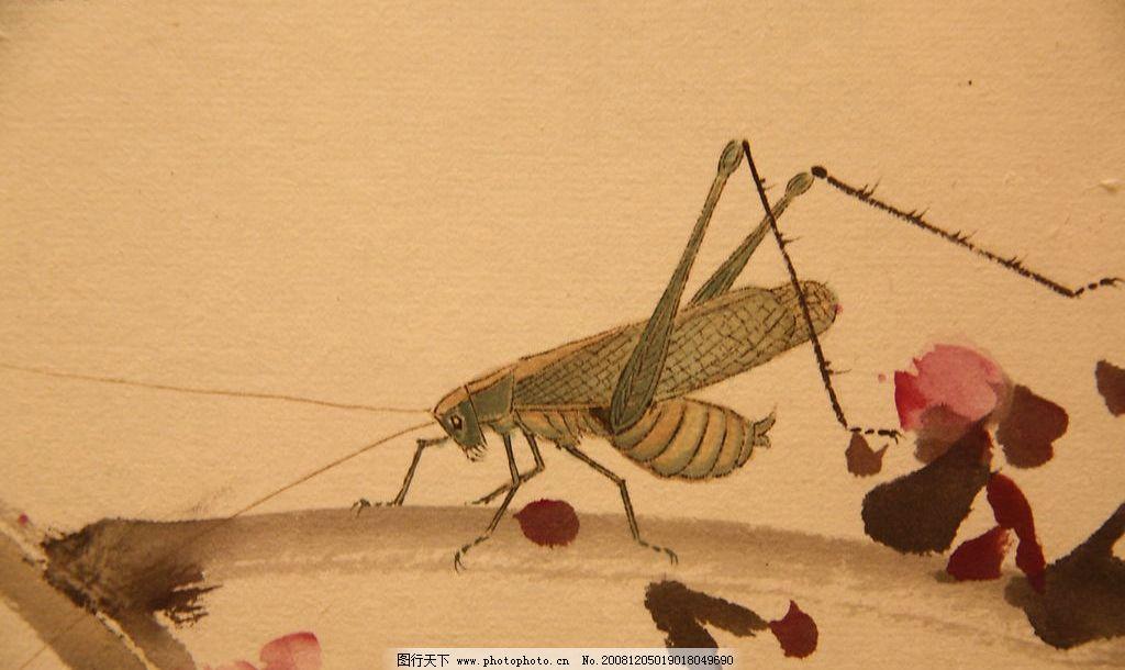 国画 动物 蝗虫 虫子 艺术 文化艺术 绘画书法 设计图库 72dpi jpg