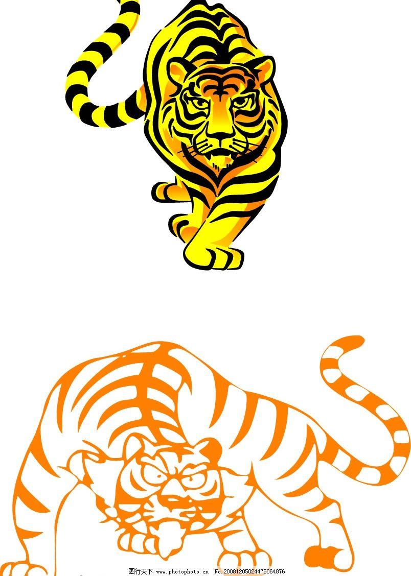 老虎 虎 动物 野生动物