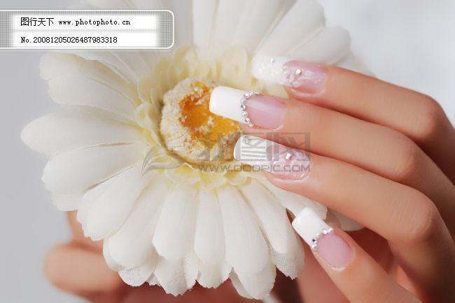 美甲图 美容美甲 指甲 美甲艺术 指甲艺术 绚丽多彩 图片素材 风景