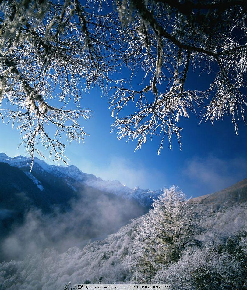 高山雪景图 蓝天 白云 雪峰 树木 雾 雪裹树枝 高清图片 自然景观