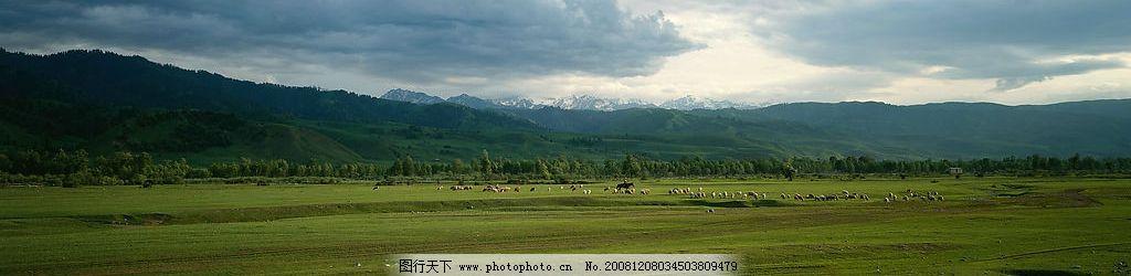 草原风景长卷图片