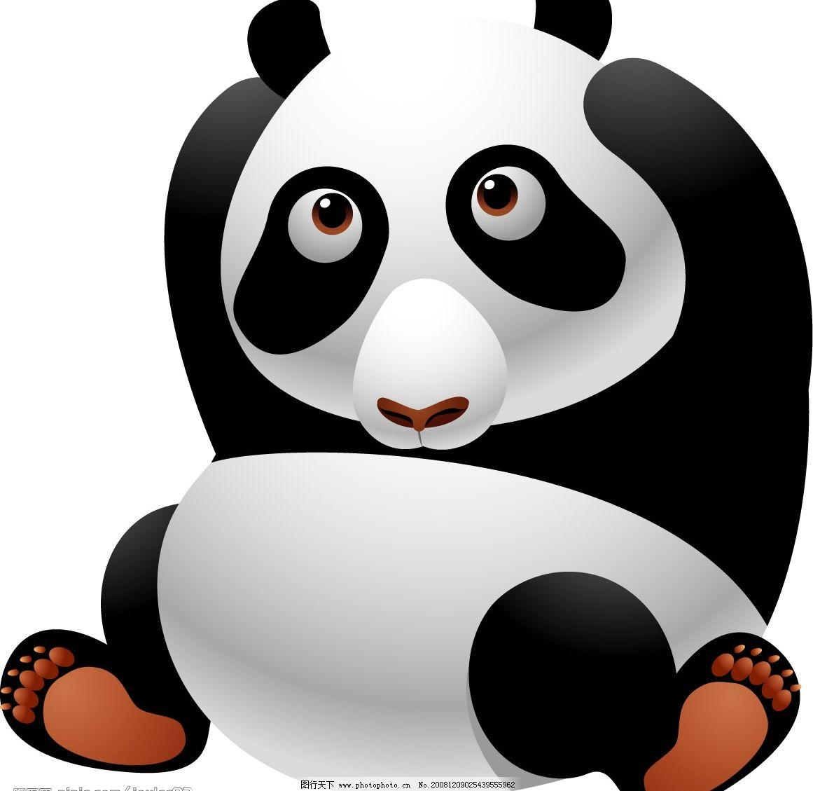 熊猫 抱头的熊猫 可爱小熊猫 矢量图库 可爱动物