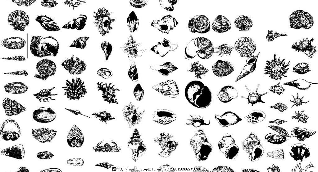田螺 海底 水 生物 动物 贝壳 生物世界 海洋生物 矢量图库 cdr