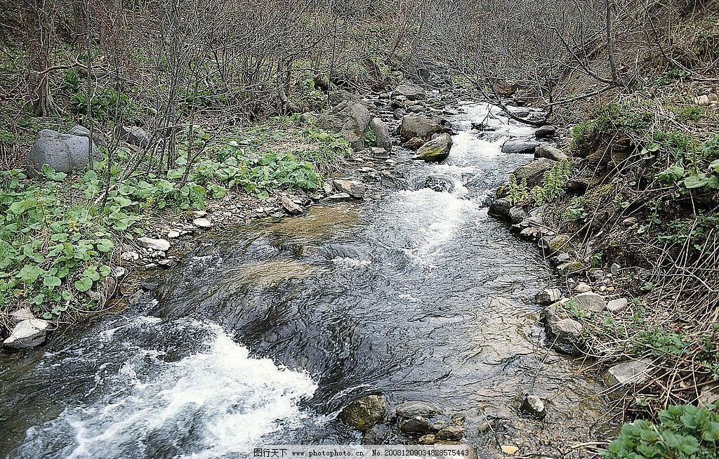 森林小溪图片 自然风光 自然景观 自然风景 中河山水图片 风景 秀丽