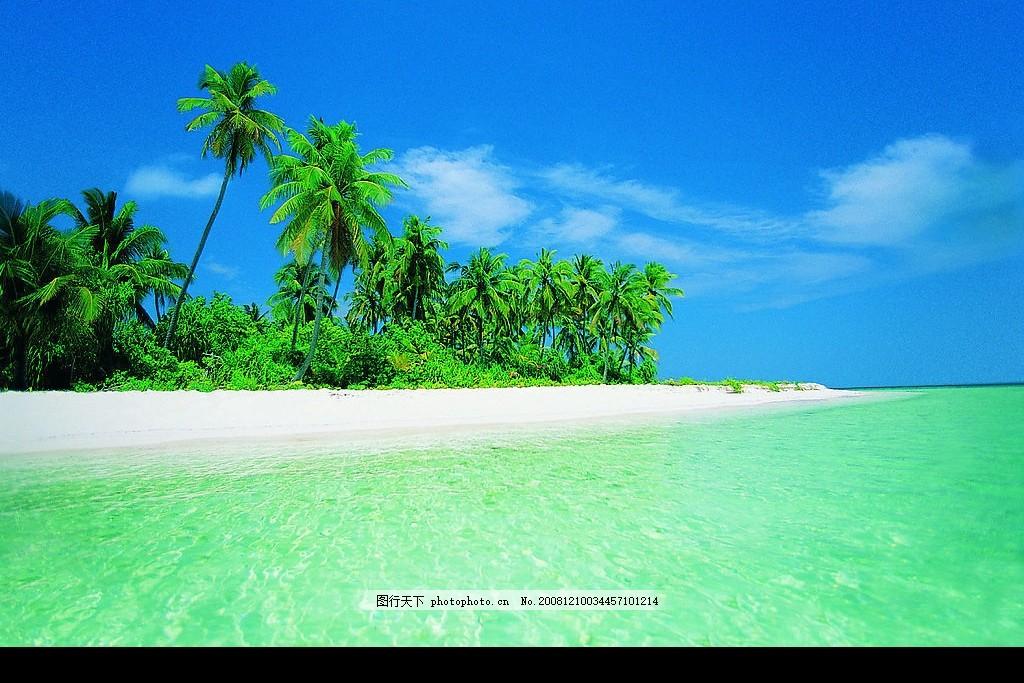海滩风景 椰树 大海 天空 沙滩 海边 背景 摄影图库