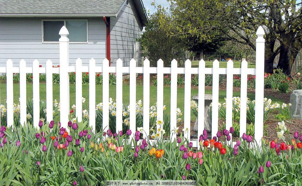 欧式楼房 白色栅栏 花园图片