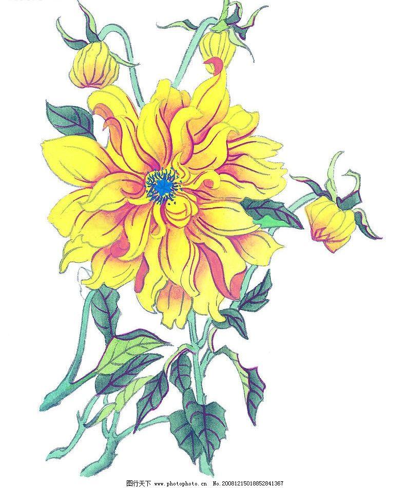 花卉24 花朵 植物 国画 艺术