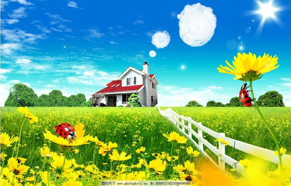 别墅设计 别墅 房地产 春天 向日葵 花的海洋 蓝天 白云 天空 甲虫