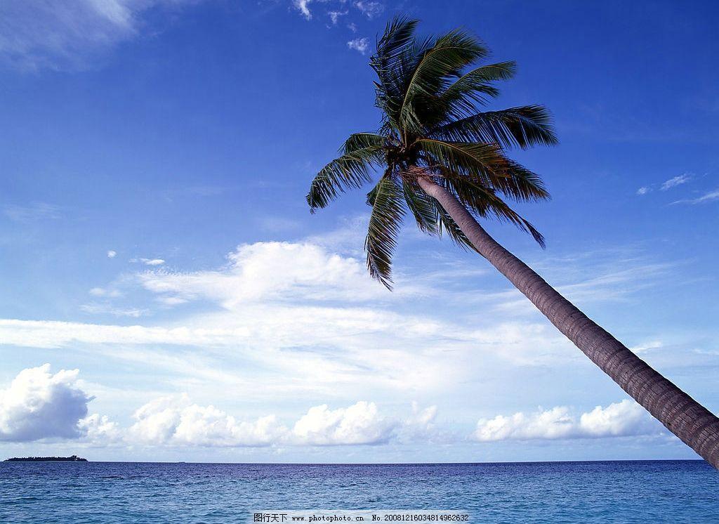 海边风景 南洋风情 椰子树 蓝天 白云 蔚蓝海洋 晴天 出游 温柔 自然