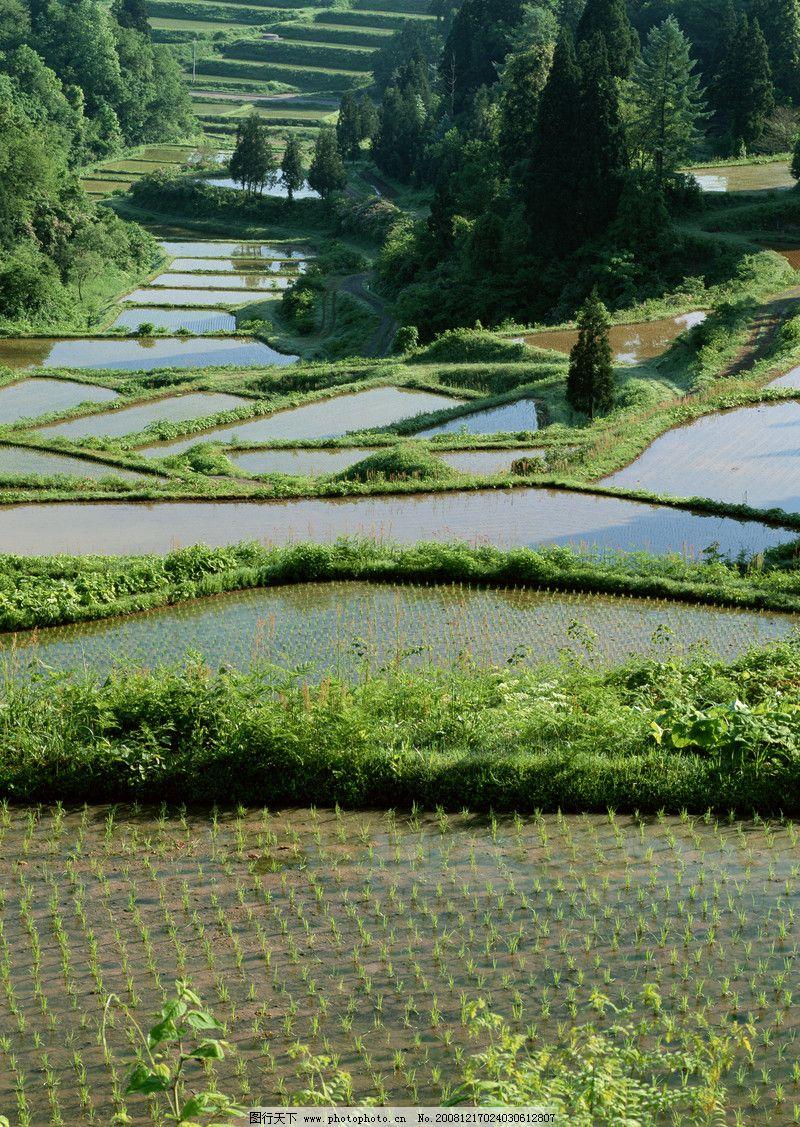 田园四季0025 自然风景