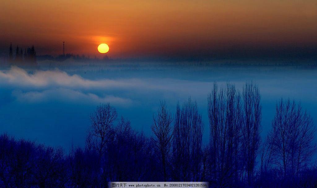 冬季白早晨 冬季 早晨 树林 太阳 雾气 鸟 日出 自然景观 自然风景