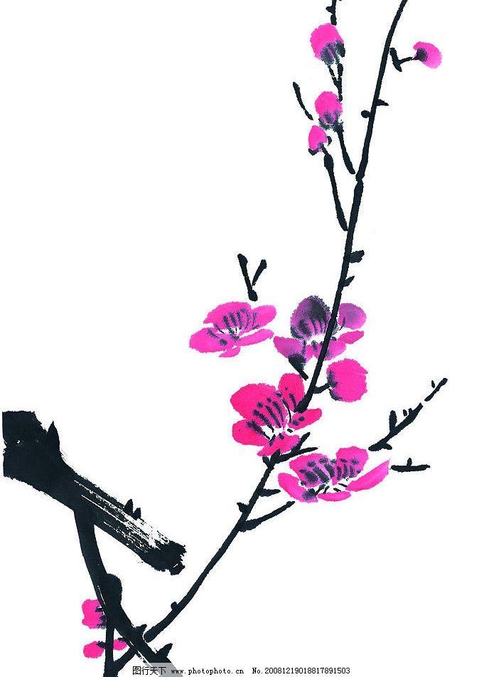 梅花 红梅 花卉 花朵 枝头 花 文化艺术 传统文化 设计图库 72dpi jpg