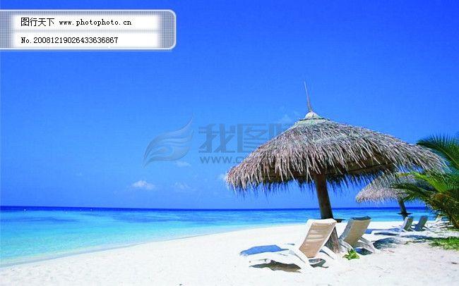 沙滩风景 沙滩风景免费下载 大海 海景 海滩 椰树 椅子 椅子