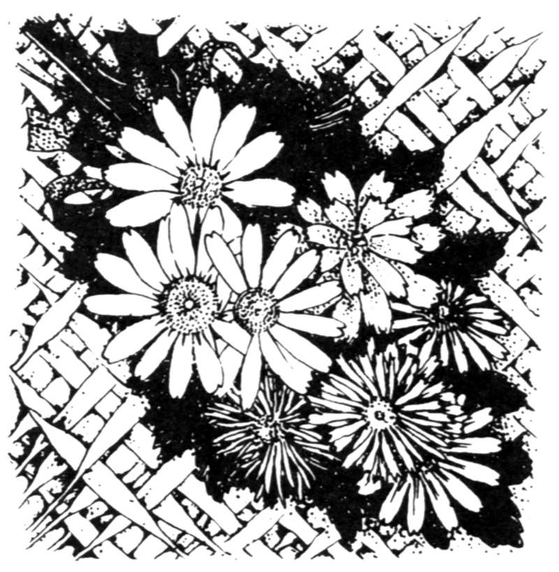 现代图案花纹0428