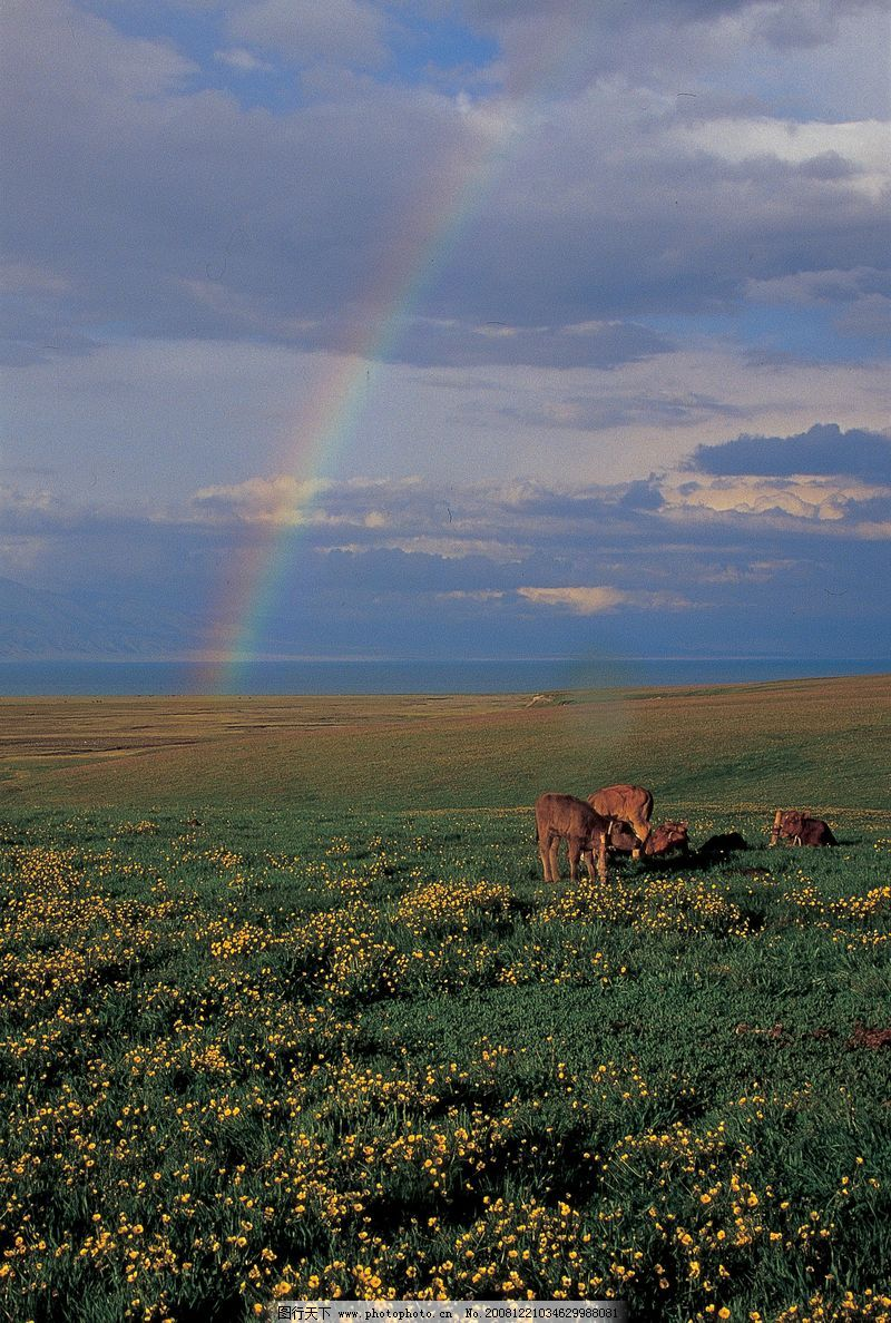 新疆旅游篇0332_风景名胜_自然景观_图行天下图库