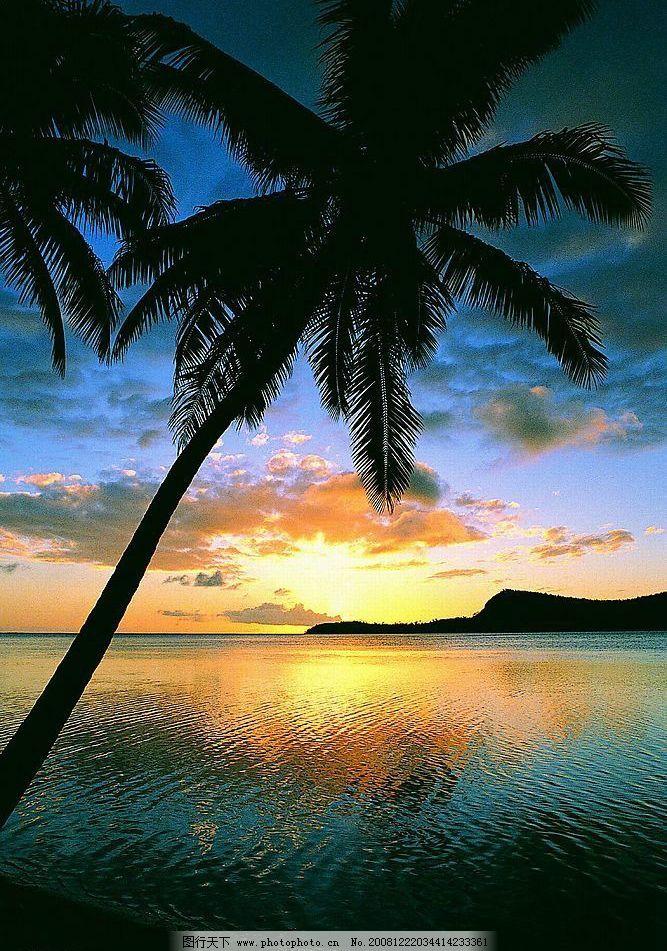 黄昏 椰子树 日落 大海 自然景观 山水风景 摄影图库 72dpi jpg