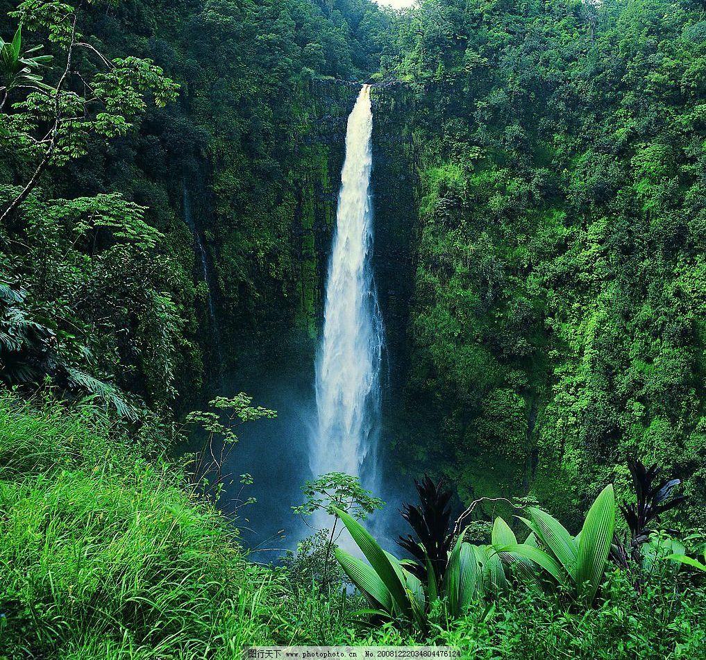 小瀑布 绿色 山崖 飞瀑 树木 自然风景 高清摄影 图片素材 自然景观