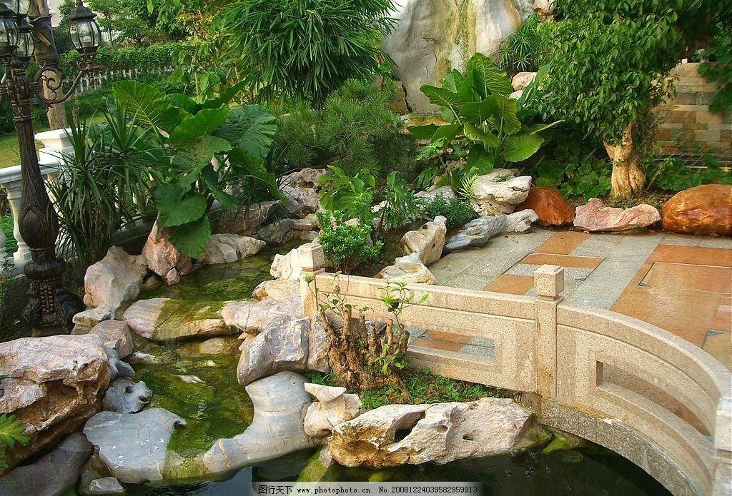 花园 园林 水池 别墅 鱼池 绿花 环境 建筑园林 园林建筑 摄影图库