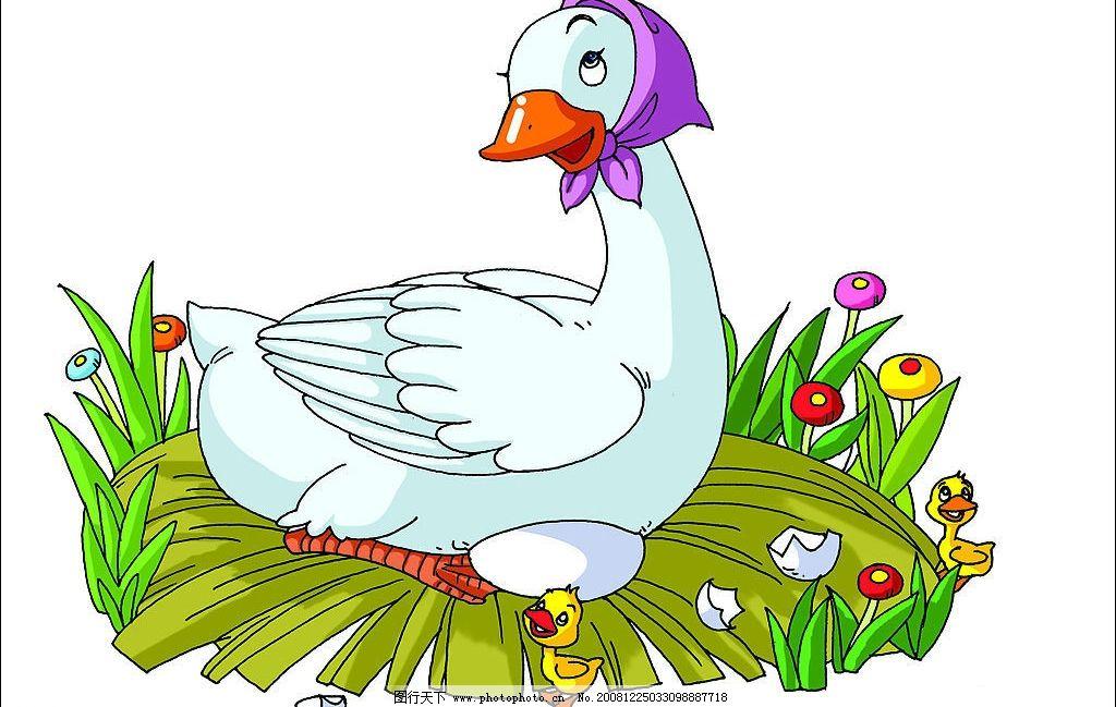 鸭igy抗体的分析结构