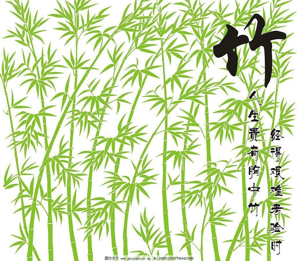 竹 精美竹 竹子 竹叶 竹林风景 艺术竹 矢量竹 其他矢量 矢量素材