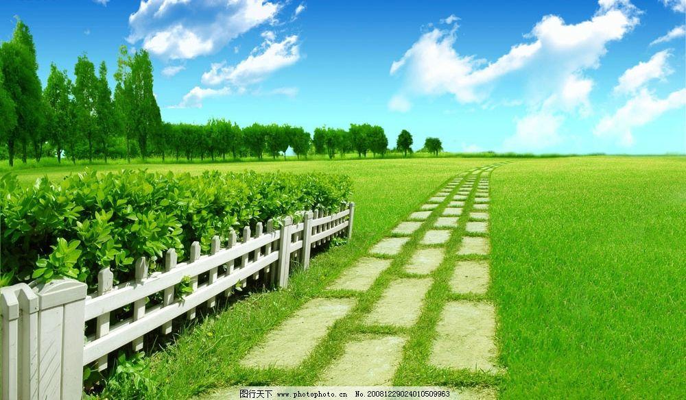 蓝天草地 蓝天 草地 树林 栅栏 小路 自然景观 人文景观 设计图库 300