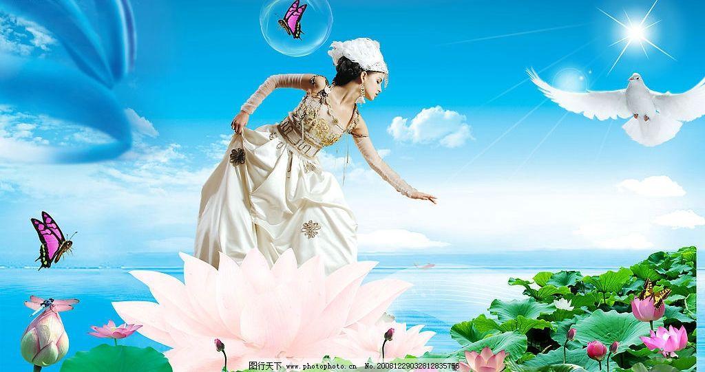 美丽的荷花 蓝天 天空 白云 云朵 云彩 阳光 太阳 光线 蝴蝶