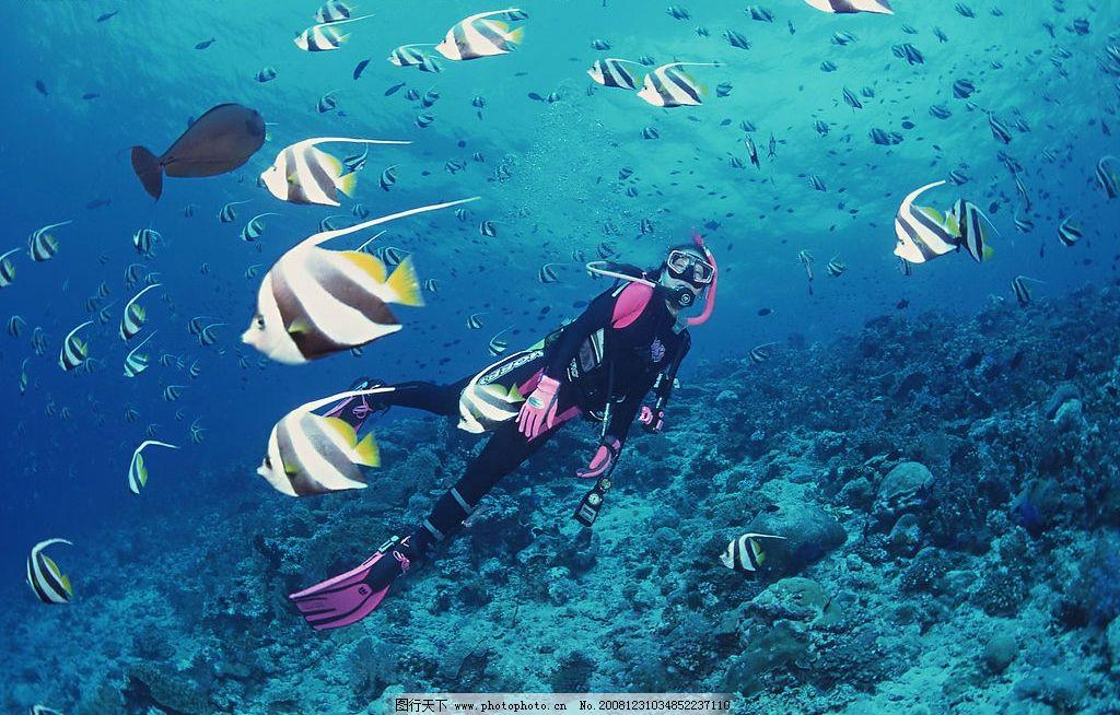 浅海潜水图片 自然风景 自然风光 自然景观 海水 海洋 潜水人员 海底